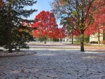 fall colors and snow on campus